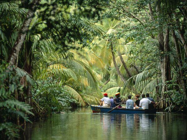 Du lịch rừng nhiệt đới tại Dominica