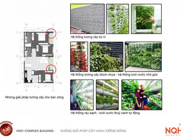 Nhiều giải pháp tường cây xanh mát tại chung cư AnLand HH01 Nam Cường