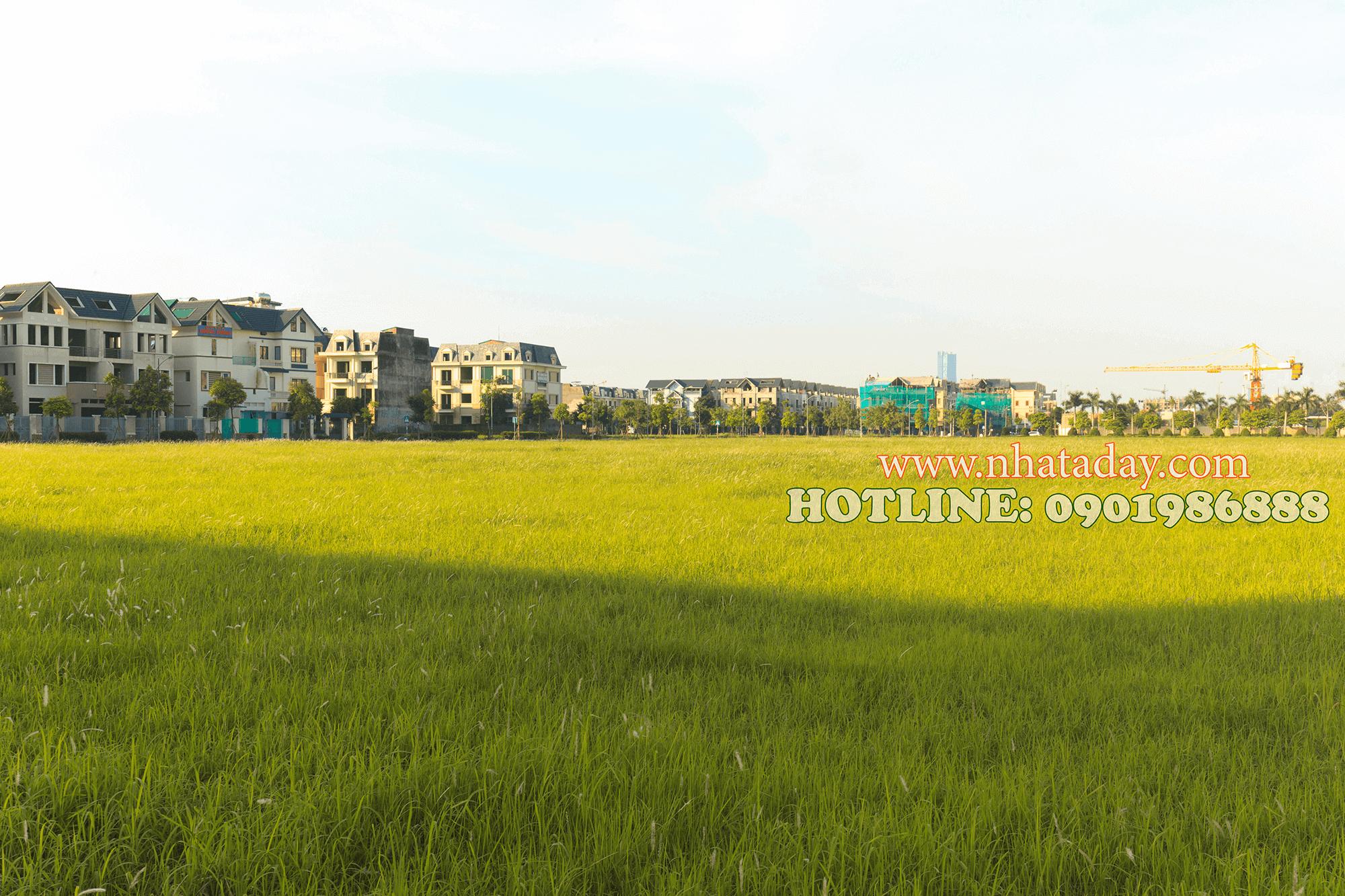 Một góc khu đô thị Dương Nội A